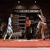 Zidane karaté coup de boule