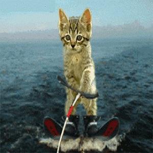 Minou ski nautique