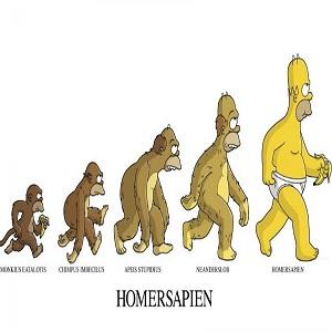 Evolution version Simpson