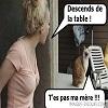 Humour blonde et le chat