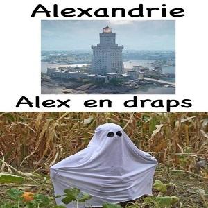 Alexandrie Alex en draps