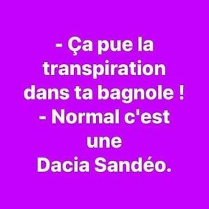 Dacia Sandeo