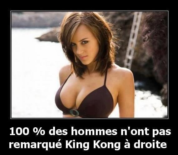 La belle et King Kong