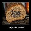 Souris dans le pain