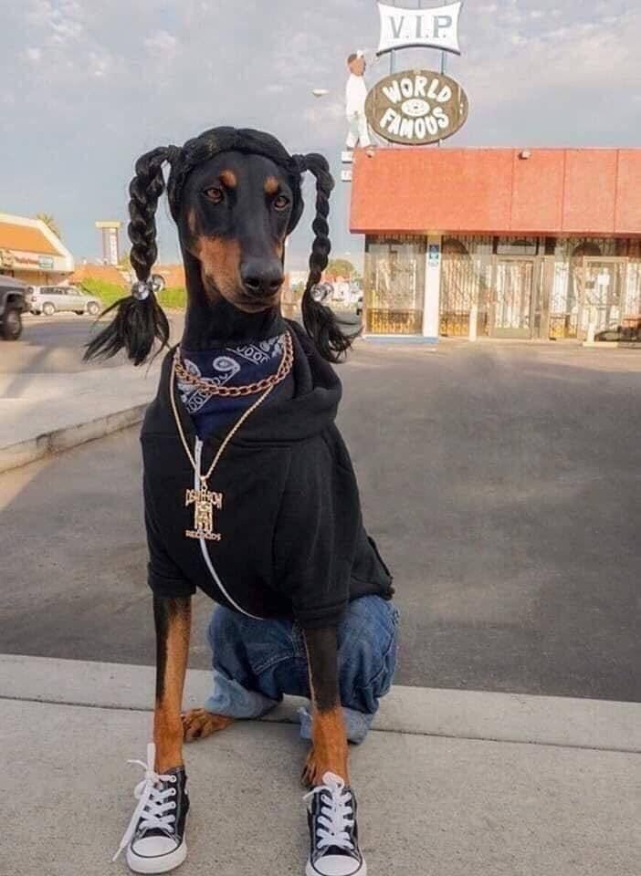 Snoop Dogg réel